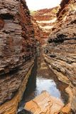 Karijini nationalpark, västra Australien Royaltyfri Fotografi