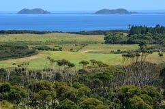 Karikari halvö - Nya Zeeland Arkivfoton