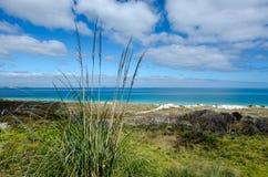 Karikari halvö - Nya Zeeland Fotografering för Bildbyråer