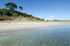 Karikari halvö - Nya Zeeland Arkivbilder