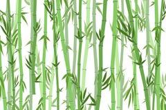 Karikatur-Bambus Forest Landscape Background Vektor lizenzfreie abbildung