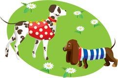 Karikatur der Hunde in der Kleidung Stockbilder