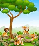 Karikatur der wilden Tiere im Dschungel stock abbildung