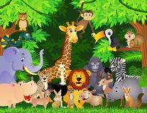 Karikatur des wilden Tieres Stockbilder
