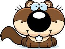 Karikatur-Eichhörnchen-Lächeln Stockfotos