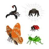 Karikatur eingestellt: Skorpionsspinnenschmetterlings-Marienkäferheuschrecke Stockbilder