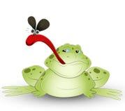 Karikatur-Frosch Stockfotografie