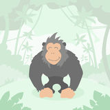 Karikatur Gorilla Green Jungle Forest Colorful Stockfoto