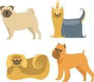 Karikatur-Hunde Stockfoto