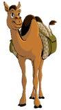 Karikatur-junges afrikanisches Kamel mit Gepäck Stockbild