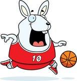 Karikatur-Kaninchen-Basketball Lizenzfreie Stockbilder
