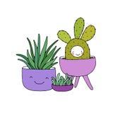 Karikatur nette Succulents im Topf Lizenzfreie Stockfotografie
