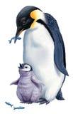 Karikatur-Pinguine Lizenzfreie Stockbilder