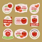 Karikatur-Tomaten-Ausweise oder Kennsatzfamilie Vektor Stockfoto