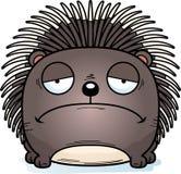 Karikatur-trauriges Stachelschwein Stockfotos