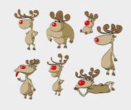 Karikatur-Weihnachtsrene Stockfoto