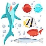 Karikaturartfisch- und -wasserblasen Haifisch, Sardine, Diskus, zebrasoma, Schmetterlingsfisch, lokalisiert auf weißem Hintergrun Stockbild