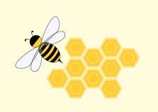 Karikaturbiene in der Bienenwabe Lizenzfreie Stockbilder