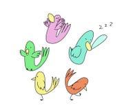 Karikaturgekritzelvögel Stockfotos