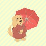 Karikaturhund mit rotem Regenschirm Lizenzfreies Stockbild