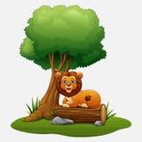 Karikaturlöwe, der unter dem Baum sitzt Stockbilder