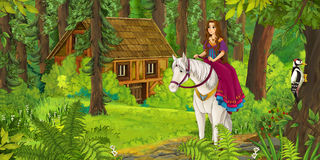 Karikaturmädchenreiten auf einem Schimmel - Prinzessin oder Königin Lizenzfreie Stockbilder
