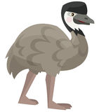 Karikaturpapagei - Emu - lokalisiert Stockfotos