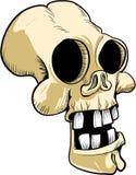 Karikaturschädel mit den großen Zähnen Lizenzfreies Stockfoto