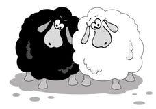 Karikaturschafe. Lizenzfreie Stockfotos