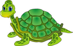 Karikaturschildkröte Stockfoto