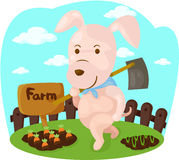 Karikaturschwein, das Bauernhofarbeit erledigt Stockfotos
