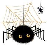 Karikaturspinne, die oben einen Tarantula auf Spinnennetz schaut Lizenzfreies Stockfoto