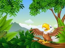 Karikaturweißkopfseeadler auf einem Baumast lizenzfreie abbildung