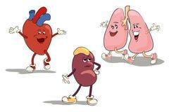Karikaturzeichensatz von menschlichen inneren Organen Stockbilder