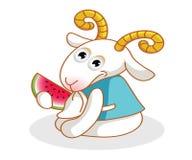 Karikaturziege, die Wassermelone isst Stockfotos