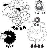 Karikatuur van schapen Optielijn en de optie het silhouet Stock Foto's