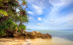 Karimunjawa印度尼西亚Java海滩海岸线岩石 免版税库存照片