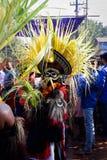 karinkali une représentation folklorique, Kerala Image libre de droits