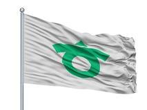 Kariya City Flag On Flagpole, Giappone, prefettura di Aichi, isolata su fondo bianco Illustrazione di Stock