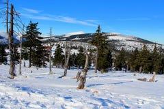 Karkonoska passerande i vinter Arkivfoto
