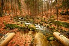 Karkonoski国家公园, Szklarska Poreba,波兰 库存照片