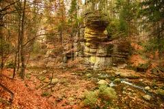 Karkonoski国家公园, Szklarska Poreba,波兰 免版税图库摄影