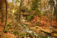 Karkonoski Nationaal Park, Szklarska Poreba, Polen royalty-vrije stock foto