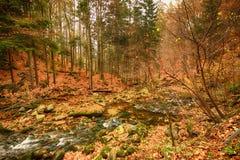Karkonoski Nationaal Park, Szklarska Poreba, Polen stock foto's