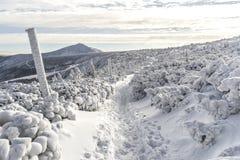 Karkonosze-Berge im Winter, Polen Lizenzfreies Stockbild