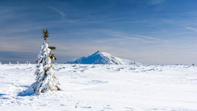 Karkonosze/Krkonose山在冬天,登上Sniezka,波兰,捷克共和国 免版税图库摄影