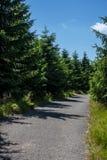 Karkonosze Mountain View photos libres de droits