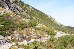 Karkonosze mountains Royalty Free Stock Images