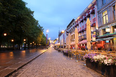 Free Karl Johans Gate. Oslo Stock Photos - 42213913