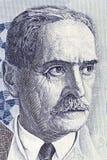 Karl Landsteiner portret Zdjęcie Stock